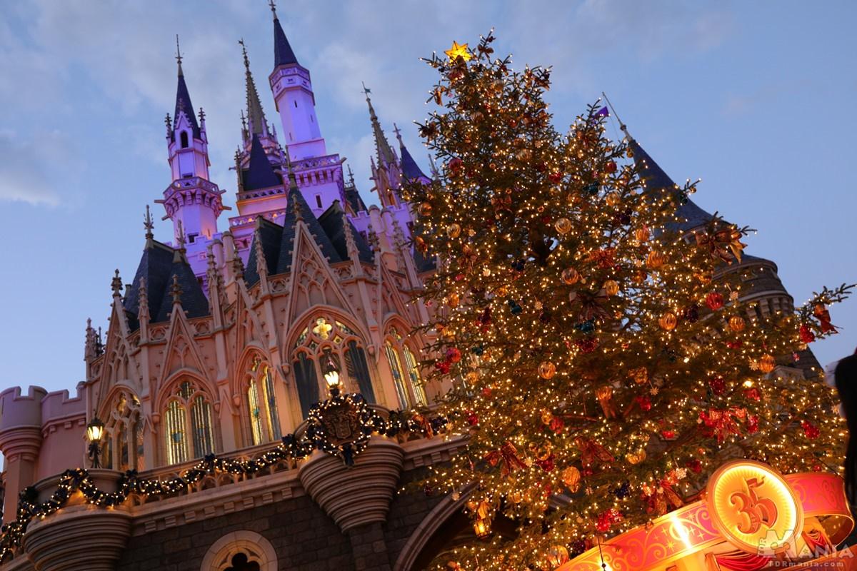 シンデレラ城裏 クリスマスツリー
